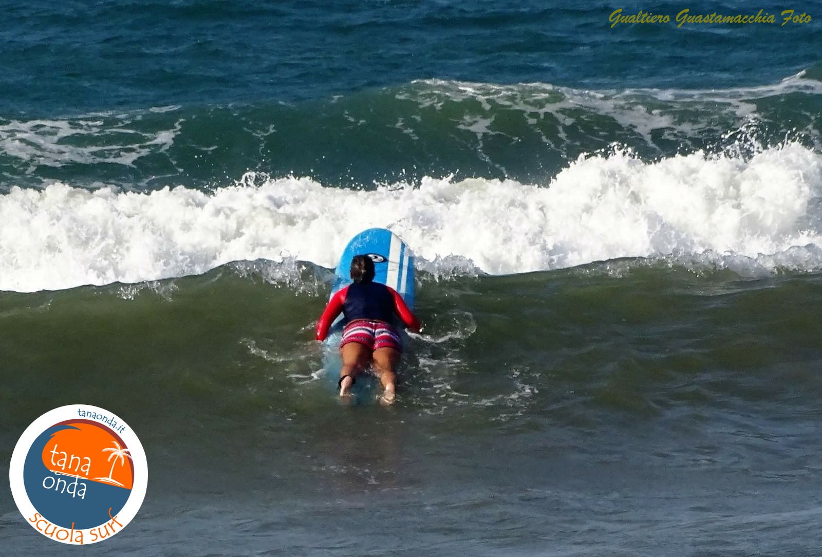 Surf Bari